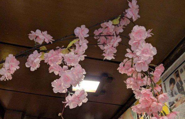 桜の飾りつけ3